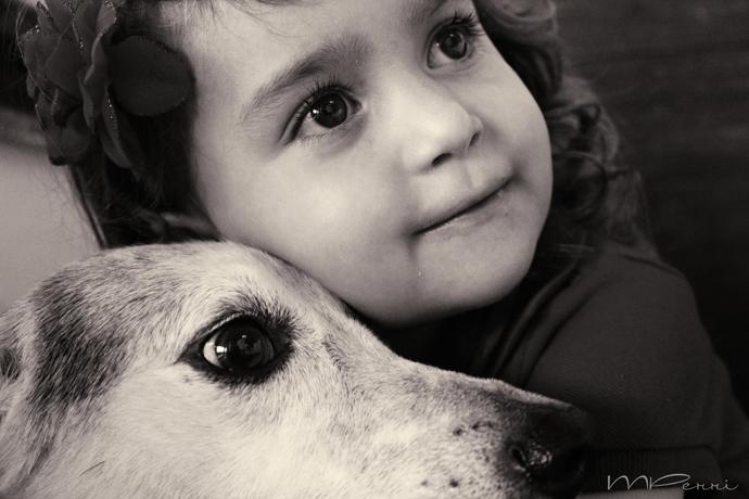 Dengo com cão